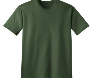 DT1170_ThymeGreen_Flat_Front_2010