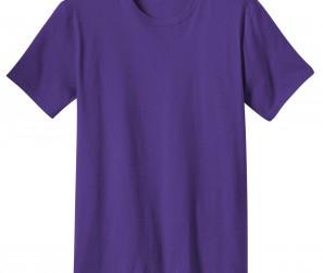 DT5000_Purple_Front_052312
